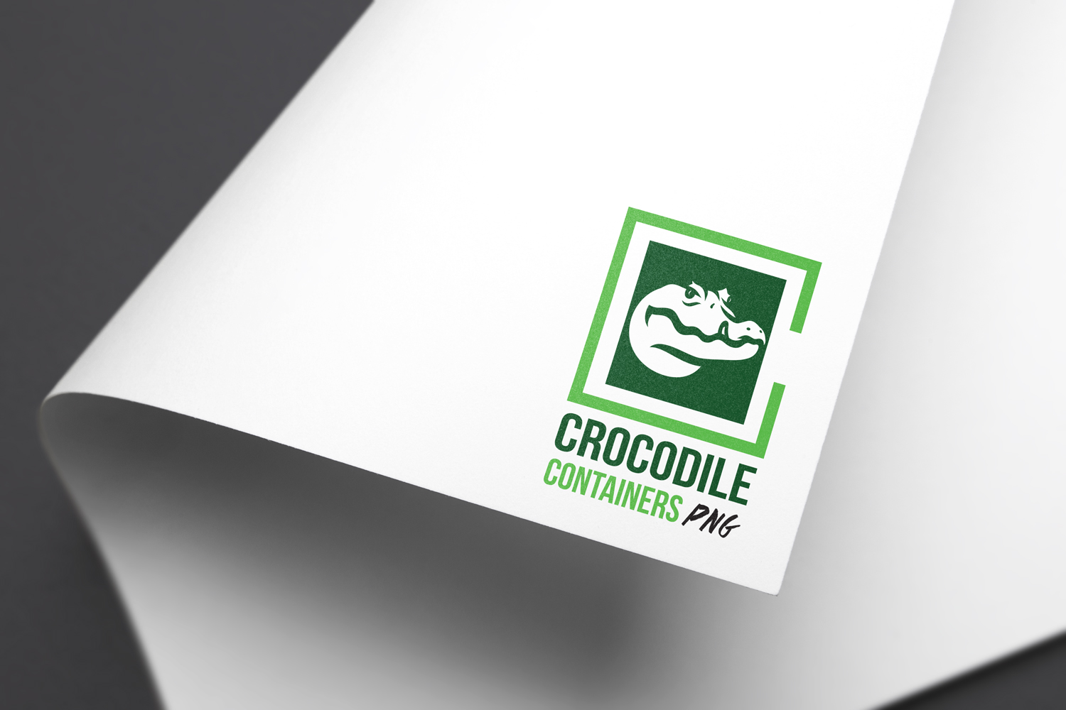 Crocodile Containers